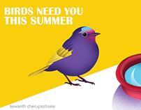 save birds in summer