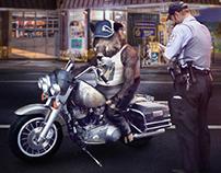 Boar Biker | Personal project