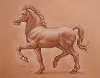 Horse burnt siena Kamil Strzelecki