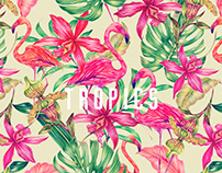 Tropic Luxury Exotic Patterns