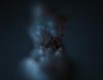 Blob01