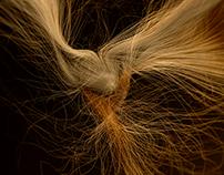 HAIR ! - 3D experiment
