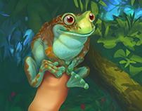 Amazon forest frog, personal illustration