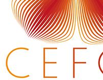 Identidad Visual y difusión CEFOI - Haiti