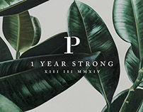 P & Co - One Year Strong
