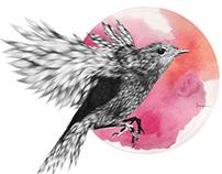 Furry Bird II