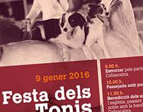 Poster - Festa dels Tonis