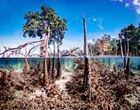 Batasan Island : a vulnerable paradise