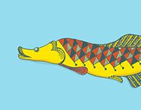 O Pirarucu