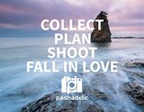 Web Marketing for Pashadelic