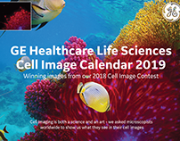 GE Healthcare Life Sci Cell Winner Image Calendars