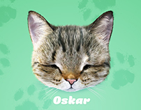 Oskar the Blind Cat