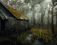 Swamp - A lost paradise