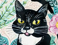 Renato, o gato