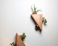 Indoor Plant Module