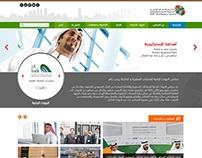 SME Developer Council