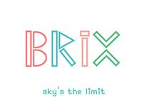 [BRAND IDENTITY] BRIX: A Toy Company