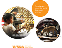 Marketing Work for WSPA 2013-2014
