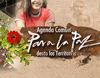 Agenda comun para la paz