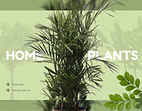 Web design for an online store of home plants