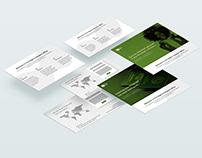 Nigeria Passport Office Web Design