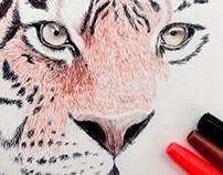 Biro Tiger