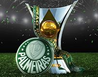 Taça Palmeiras Campeão 2016