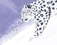 Disney Nature - Born in China Snow Leopard Print