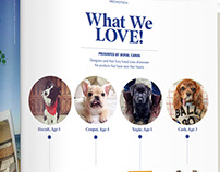 """Pet Products We Love"" Advertorial"