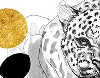 Jaguar de Teotenango