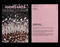 ANDRÉS ANZA: DE LO REAL Y LO IRREAL