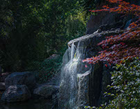 Botanical Waters