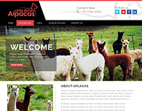 Little Acres Alpacas Home Page Design Concept