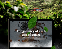 The journey of each cup of coffee - Nespresso