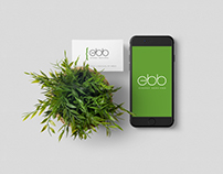 Ebb Energy Services