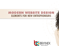 MODERN WEBSITE DESIGN ELEMENTS FOR NEW ENTREPRENEURS