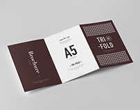 Tri-Fold A5 Brochure Mock-up 2