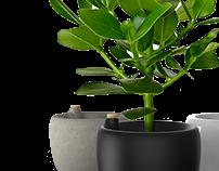 (Parrot) Flower Pot