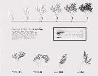 FRACTAL PLANT I Generative algorithms: L-System