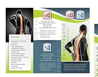 Chiropractic Brochure Design