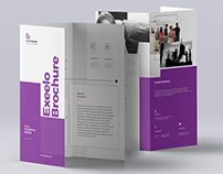 Exeelo Trifold Brochure