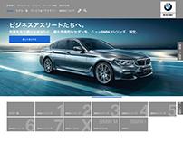 UI/UX web design team lead.