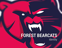 Bearcats Logo
