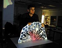 Spatial Dynamics- Carol Lasch- Nature Project
