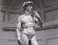 David Michelangelo Study