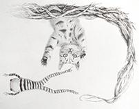 Illustration//Sketches
