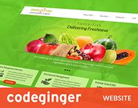 Codeginger Website