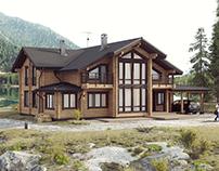 Log Art House
