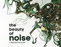 the beauty of noise
