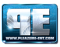 Pleazure Entertainment and PE Marketing Logo Design